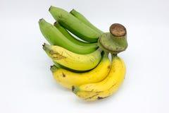 Yellow and green bananas Royalty Free Stock Photo