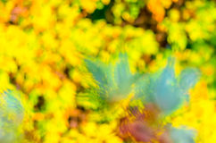 Yellow green blue blur background texture Royalty Free Stock Photo
