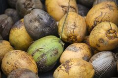 Yellow, Green, and Brown Fruits Stock Images