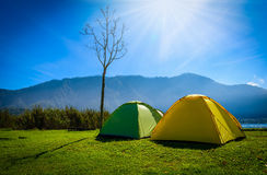 Yellow and green camping tent on grass near mountain river in mo. Rning the summer day Stock Photo