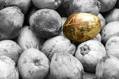 Yellow green coconut on a background of gray black and white fruits, contrast pattern. With copy space Royalty Free Stock Images