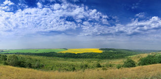 Yellow-green field. Foothills. Royalty Free Stock Photography