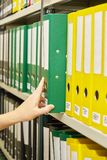 Yellow and green file folders in archive and human hand Stock Image