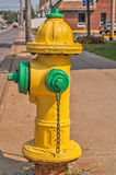 Yellow and Green Fire Hydrant Stock Image