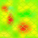 Yellow green fish skin  pattern for background. Bright fish scale seamless pattern. Gradient mesh background with fishscale ornament. Vibrant yellow green Royalty Free Stock Images