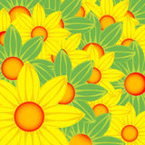 Yellow and green flowers Royalty Free Stock Photography