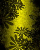 Yellow-Green Flowers Abstract Stock Photo
