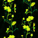 Yellow-green flowers. Royalty Free Stock Photos
