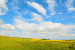 Yellow and green meadow under a cloudy sky Royalty Free Stock Photo