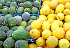 Yellow and green melons. In the shop Royalty Free Stock Photography