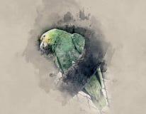 Yellow-green parrot Stock Photo