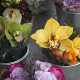 Yellow and green Phalaenopsis orchids Royalty Free Stock Images