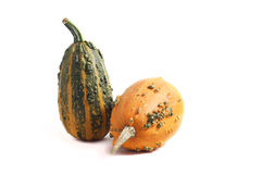 Yellow and green pumpkins isolated on white. Background Stock Photo