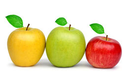 Yellow, green and red apple Royalty Free Stock Photography