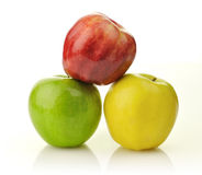 Yellow, green and red apples Royalty Free Stock Photo