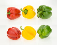 Yellow, green and red bell peppers, front and back view. Isolated on white background Royalty Free Stock Photo
