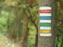 Yellow, green, red and blue tourist signs Stock Image