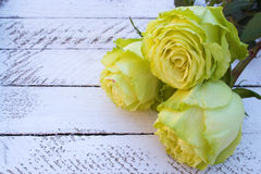 Yellow-green roses on wooden background Stock Image