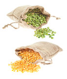 Yellow and green split peas. Canvas bags of dry yellow and green split peas spilling out Stock Images