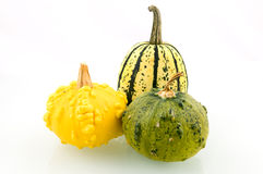 Yellow and green squashes. Isolated on white background stock photo
