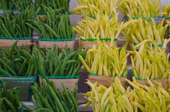 Yellow and Green string Beans in farmers wooden baskets at market Stock Photography