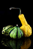 A yellow and  green striped pumpkins Royalty Free Stock Image