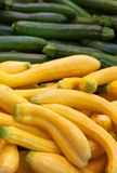 Yellow and Green zucchini Royalty Free Stock Photography