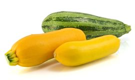 Yellow and Green zucchini  on white Stock Photography