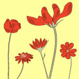 Yellow greeting card with flowers. Fully editable decorative  illustration (easy editing Stock Photo