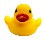 Yellow gum duck on white background Royalty Free Stock Photography