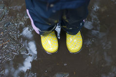Yellow gumboots Stock Image