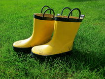 Yellow Gumboots Stock Photography