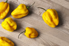 Yellow habanero peppers Royalty Free Stock Photography