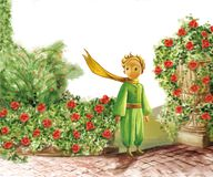 Little prince and many flowers royalty free stock image