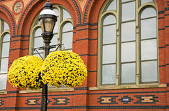 Yellow hanging mums. A view of a lamp post with hanging pots of bright autumn mums outside of a decorative red brick building stock photo