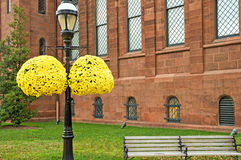 Yellow hanging mums. A view of a lamp post with hanging pots of bright autumn mums outside of a red brick building Stock Image