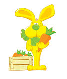 Yellow_hare_with_carrot Royalty Free Stock Photos