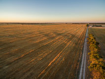 Yellow harvested agricultural fields at sunset aerial view. Royalty Free Stock Photography
