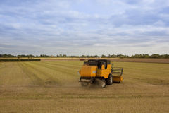 Yellow harvester Stock Images