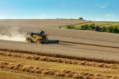 Yellow harvester combine on field harvesting gold wheat Stock Photography