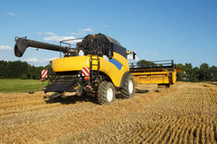 Yellow harvester combine on field harvesting gold wheat Royalty Free Stock Photography
