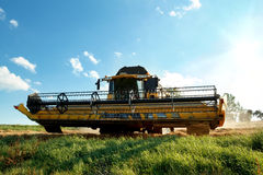 Yellow harvester combine on field harvesting gold wheat Royalty Free Stock Images