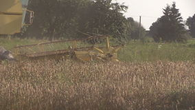 Yellow harvester combine work in grain field on end summer stock video