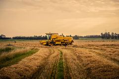 Yellow harvester driving on a field Stock Photos