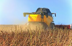 Yellow harvester working on a wheat field. Agronomy, the concept. Of farming. Agricultural machinery for fields stock image