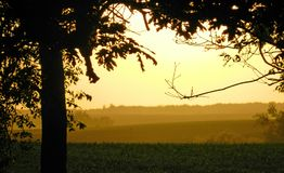 Yellow Haze Dust Over Farm Field Stock Images