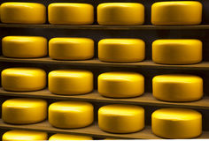 Yellow heads of cheese on the on shelves Royalty Free Stock Image