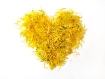 Yellow heart from flowers Stock Photos