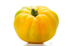 Yellow Heirloom Tomato Royalty Free Stock Images