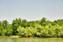 Yellow helicopter in the sky over Kuban river Stock Images
